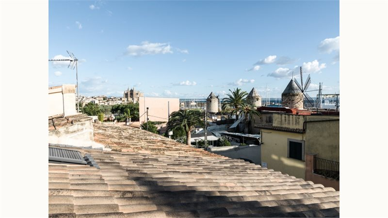 Living area: 259 m² Bedrooms: 4  - Townhouse in Palma Es Jonquet #12897 - 17